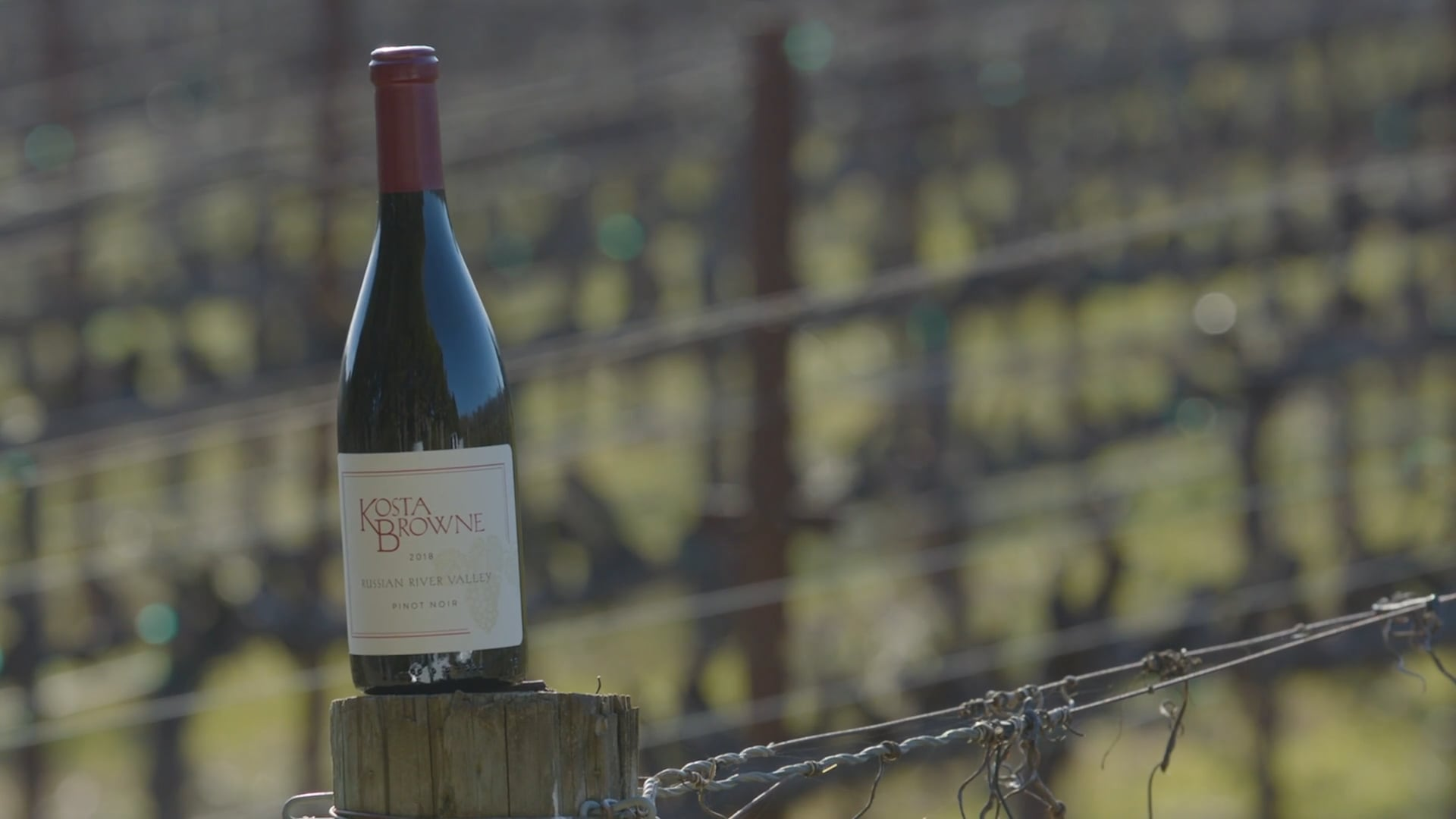 Kosta Browne – Russian River Valley Pinot Noir