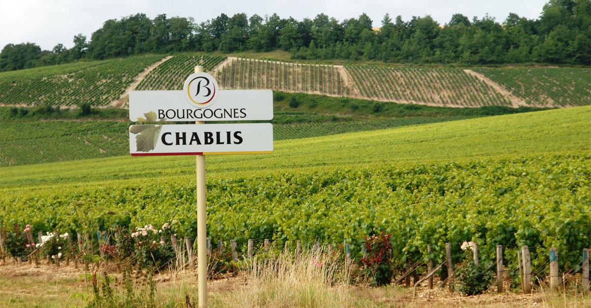 Wines of Chablis