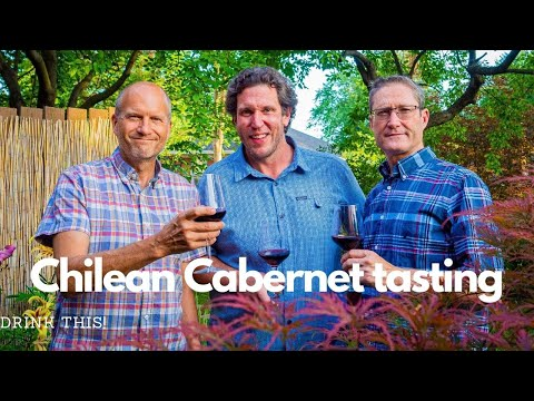 Tasting Chilean Wine – Cabernets with Chris