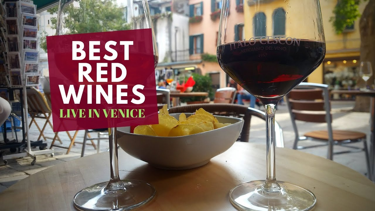 The Best Red Wines for Beginners (On the Road from Venice)